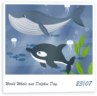 World Whale and Dolphin Day